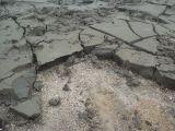堆積した泥