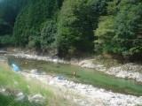 宇佐川の流れ