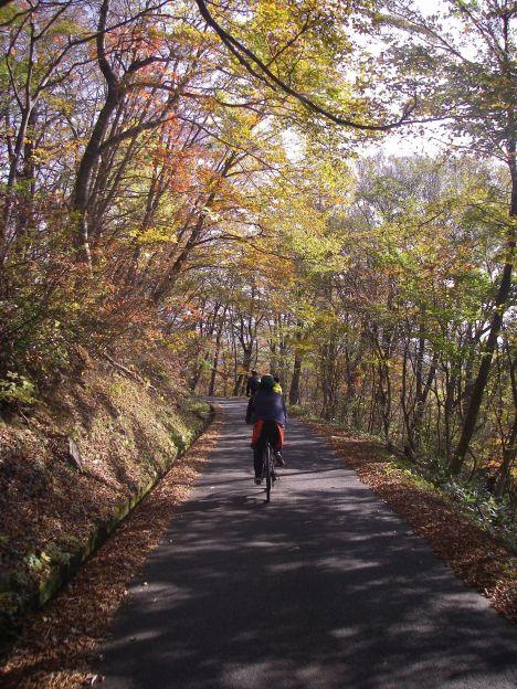 紅葉のトンネル