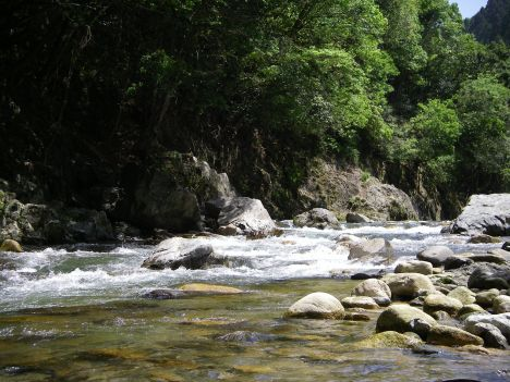 宇佐川渓谷3