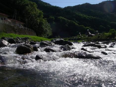 緑美しい宇佐川