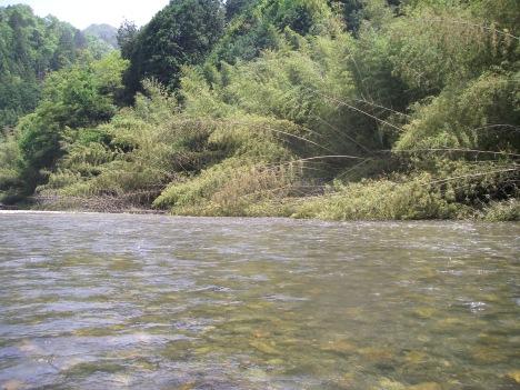 竹やぶの瀬出口