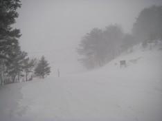 暴風雪恐羅漢