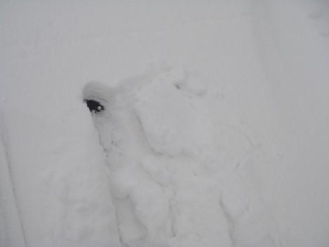 未圧雪カヤバタ
