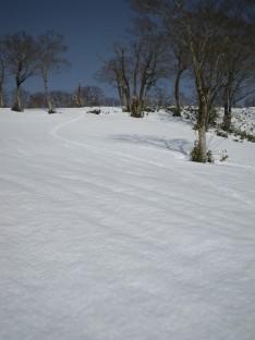 3/14 氷ノ山