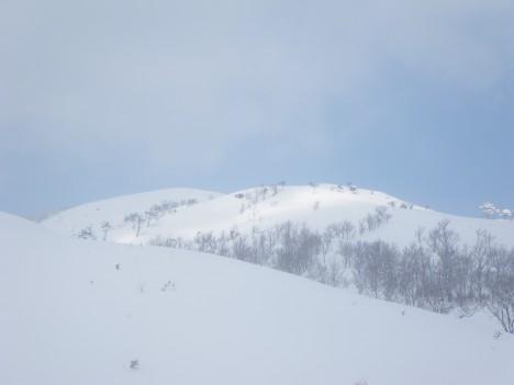 青空と白い雪