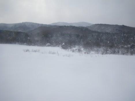 広いひろーい雪原