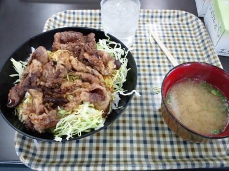 カルビ焼肉丼