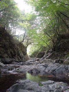2005/06/05 長瀬峡4