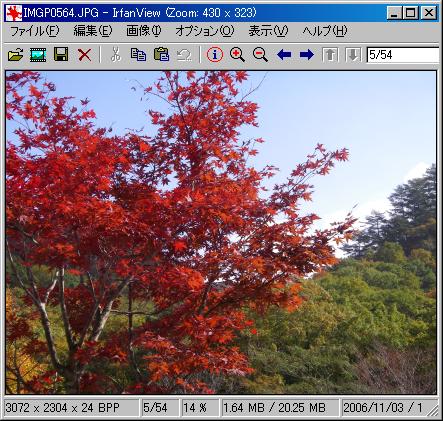 IrfanView32 日本語版