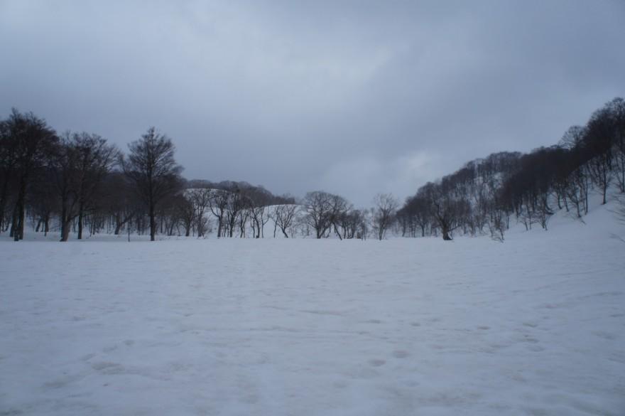 再び大雪原