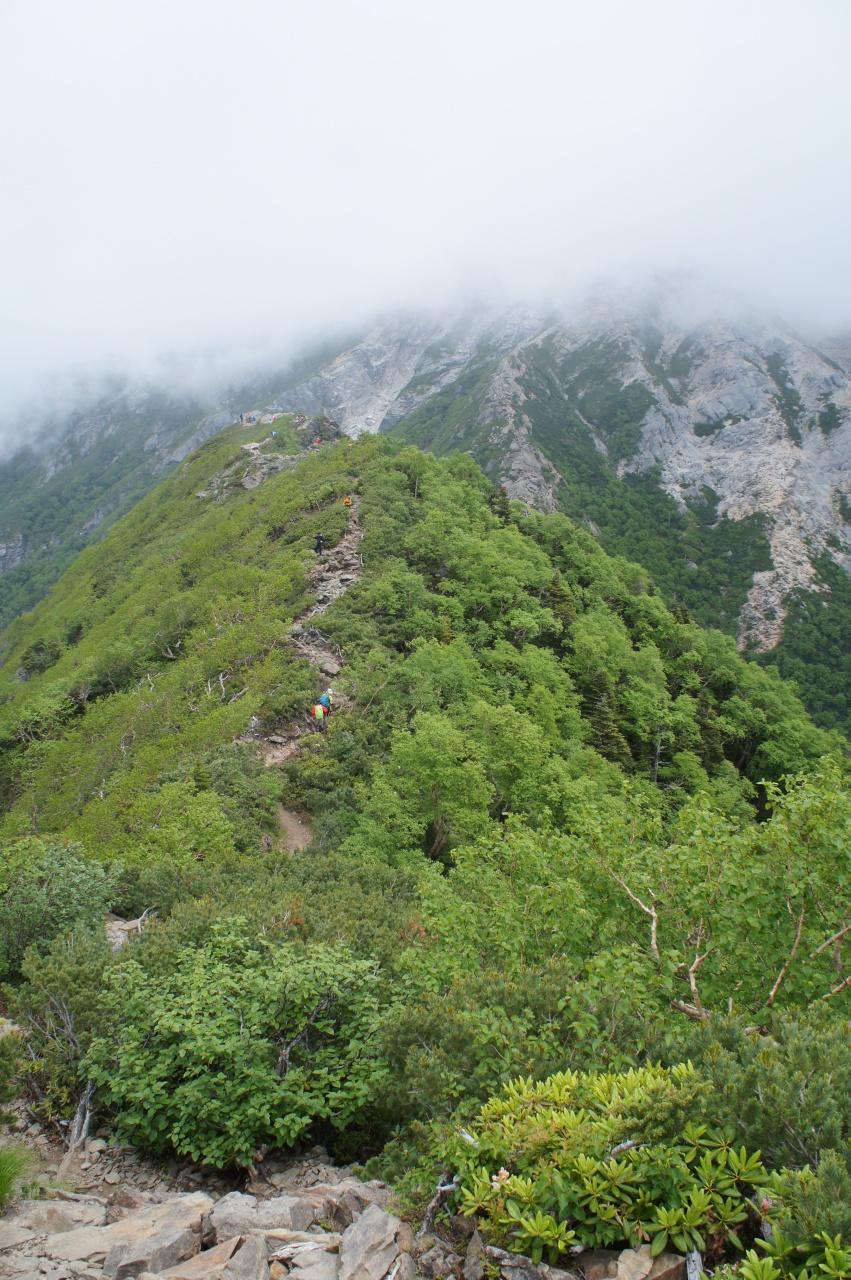 甲斐駒ヶ岳への道