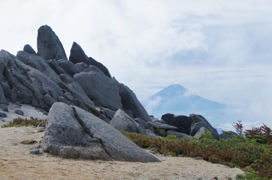 薬師岳から富士