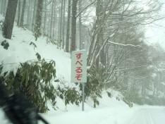 2/8 めいほうスキー場