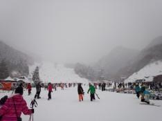 1/26 めいほうスキー場