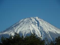 1/12 富士三昧
